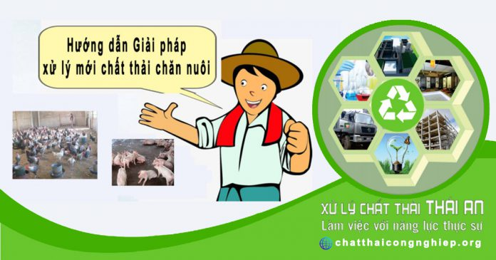 Hướng dẫn đầy đủ xử lý chất thải trong chăn nuôi trang trại tiết kiệm
