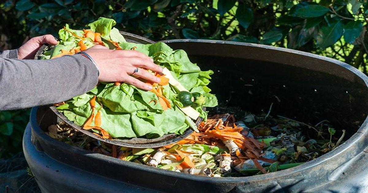 Các cách xử lý rác thải hộ gia đình