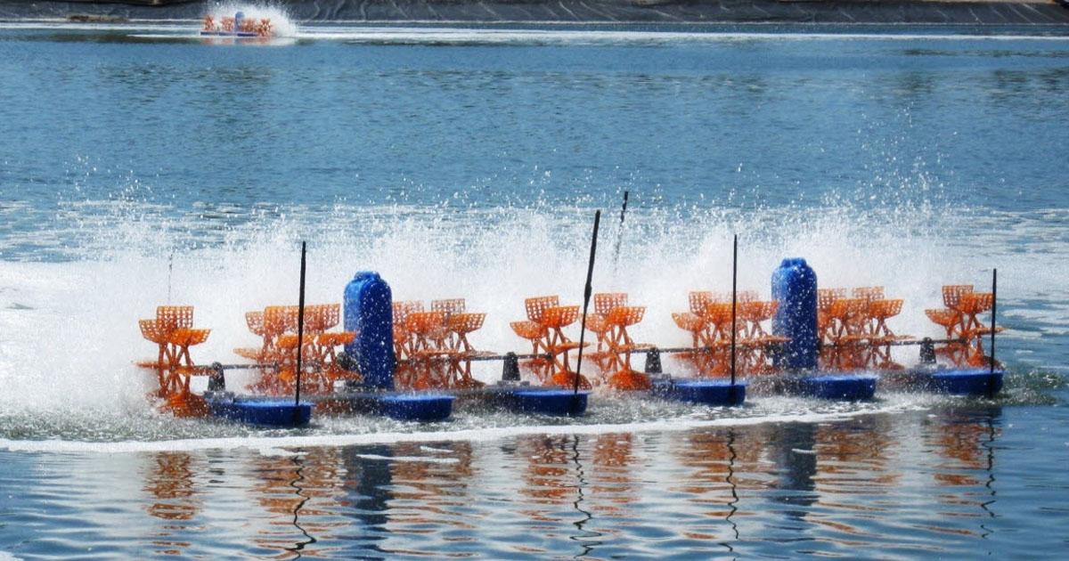 các phương pháp xử lý nước thải chế biến thủy sản