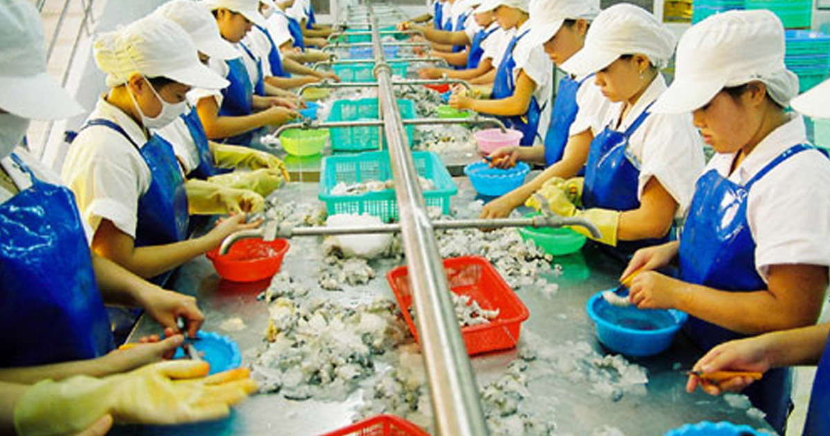 Xử lý nước thải chế biến thủy hải sản