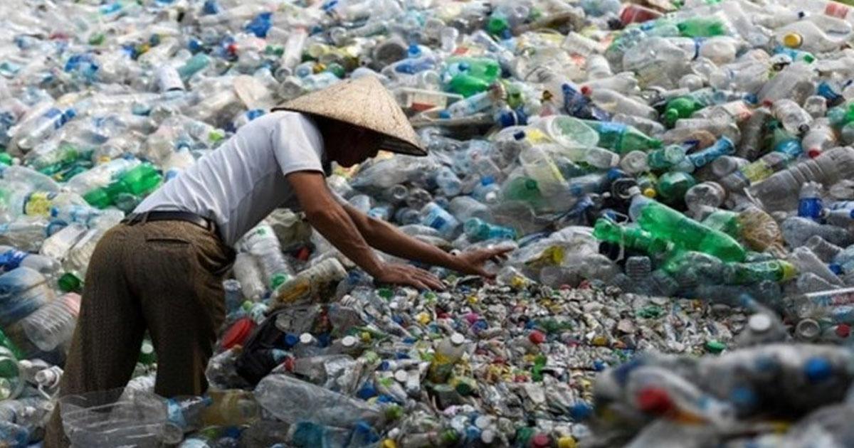 Tác hại của rác thải nhựa đối với môi trường và sức khỏe con người